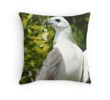 White-bellied Sea Eagle (Haliaeetus Leucogaster) Throw Pillow
