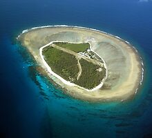 Lady Elliot Island, the very southern tip of the Great Barrier Reef by allanjonesgbr