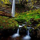 Elowah Falls, Oregon by Suraj Mathew