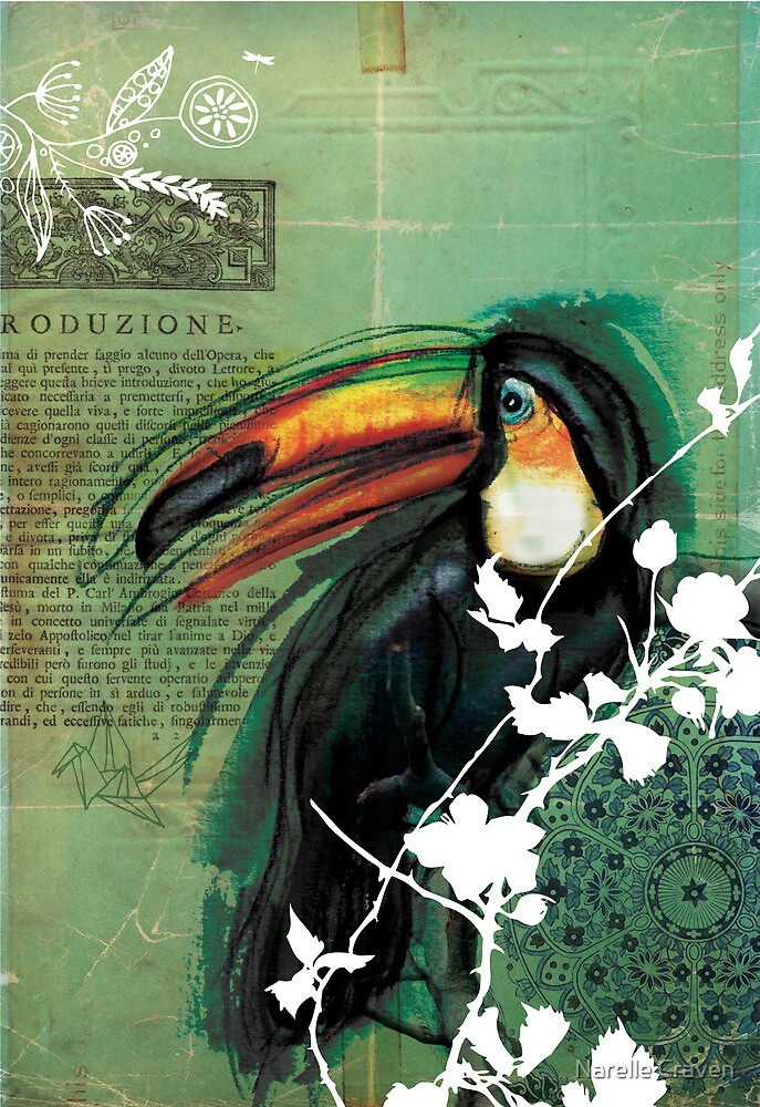 Toucan- Antique Plate- Mixed Media by Narelle Craven