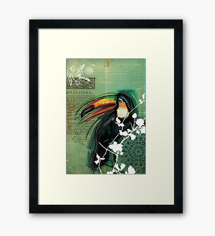 Toucan- Antique Plate- Mixed Media Framed Print
