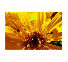 yellow and sunny Art Print