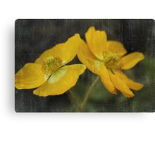 The Softest Touch Canvas Print
