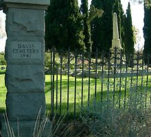 Davis Cemetery Gate (color) by tanithastlik