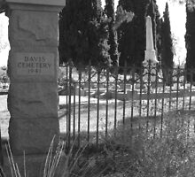 Cemetery gate in black and white by tanithastlik