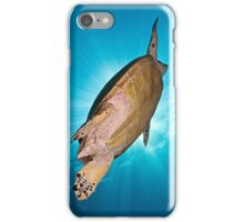 Hawksbill Turtle iPhone Case/Skin