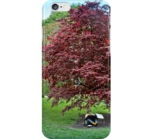 Sketching Under The Red Maple - Grounds for Sculpture iPhone Case/Skin