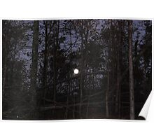 Moon Rise in the Forest Poster