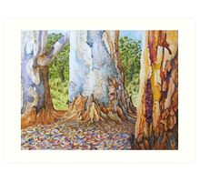 Scribbles Gum Trees Art Print