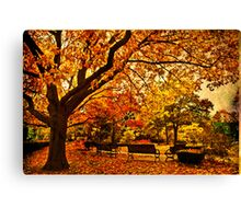 In city garden... Canvas Print