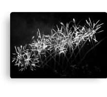 Fireworks in Monochrome Canvas Print
