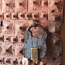 Tiny Lock For The Massive Door by Indrani Ghose