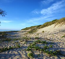 Cable Beach Sandhills by roger smith