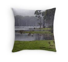 Another fine day in the office Throw Pillow