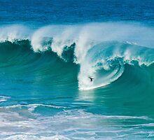 Surfs Up!!! by Julia Harwood