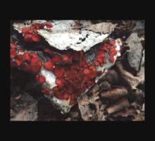 Coolest Orange Red Fungi on Cardboard Baby Tee