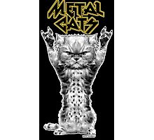 metal cats Photographic Print