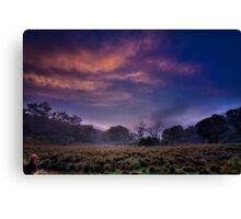 ...first light - Mt Clear... Canvas Print