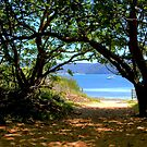 Station Beach - Sydney - Australia by Bryan Freeman