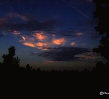 Bright Lights in Dusky Sky by Lisa Taylor