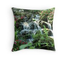 Rainbow Springs Throw Pillow