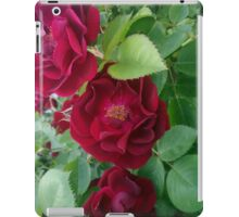 Urban Flowers iPad Case/Skin