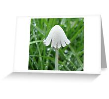 Fragile One Greeting Card