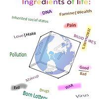 Ingredients of life, bitter sweet by Niklas Aronsson