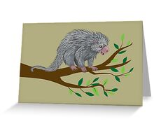 Happiness: Prehensile Tailed Porcupine Greeting Card