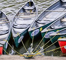 Canoes For Hire by Susie Peek