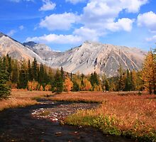 Highwood meadow by zumi