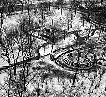 Central Park in the snow by Daniel Sorine