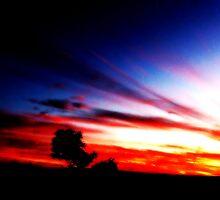 Karoo Sunset #1 by GODofNEON