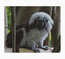 Cotton-Top Tamarin Kids Clothes