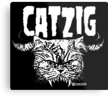 catzig Metal Print