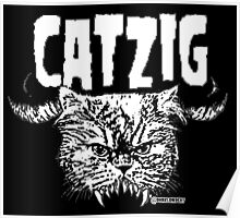 catzig Poster