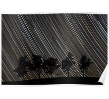 Stars Rising Over the Trees Poster