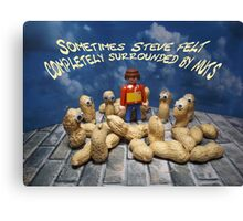 Surrounded by nuts - male Canvas Print