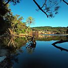 Wattamolla Looking West by Malcolm Katon