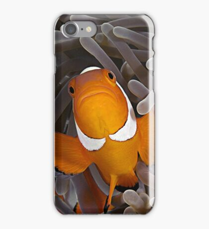 Anemone Fish iPhone Case/Skin