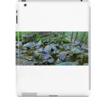 River Panorama iPad Case/Skin