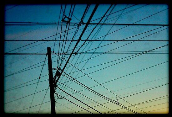 Networked Chaos by David Lamb
