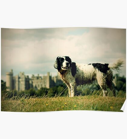 Castle Walks Poster
