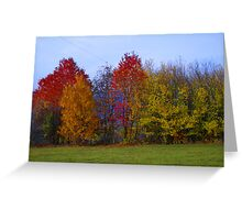 Autumn in Alsace Greeting Card