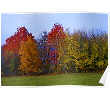 Autumn in Alsace Poster