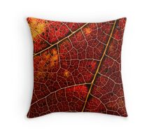 Colours and Patterns of Nature Throw Pillow
