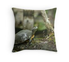 Little turtle Throw Pillow