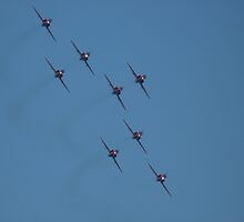 Formation Flying  by SAngell