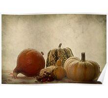 Pumpkin still life Poster