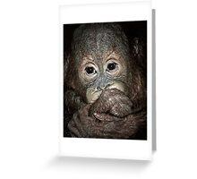 Orang Utan Baby Portrait Greeting Card